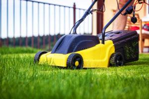le Coup de Pouce à domicile vous aide au petit jardinage